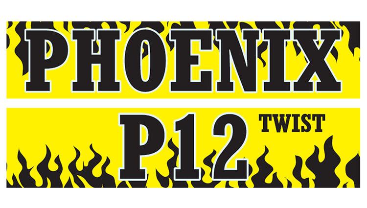 Phoenix Running Ltd, PHOENIX - VIRTUAL - P12 - Twist 2021 - online entry by EventEntry