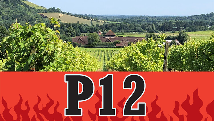 Phoenix Running Ltd, PHOENIX - P12 - The Longest Attended Day 2022 - online entry by EventEntry