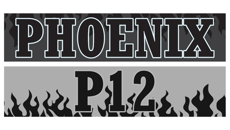 Phoenix Running Ltd, PHOENIX - VIRTUAL - P12 - The Longest Night - online entry by EventEntry