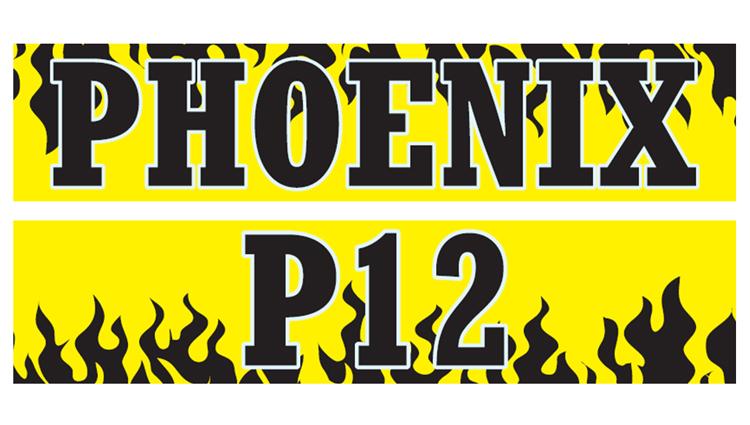 Phoenix Running Ltd, PHOENIX - VIRTUAL - P12 - online entry by EventEntry