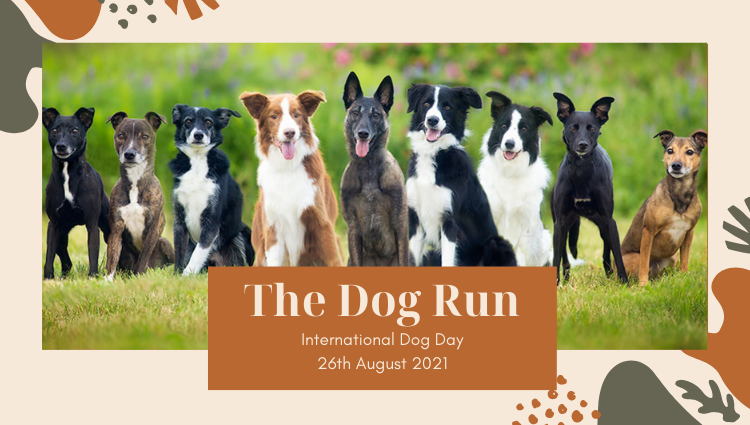 The Running Bug, THE RUNNING BUG - The Dog Run - online entry by EventEntry