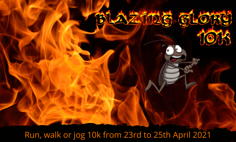 The Running Bug, THE RUNNING BUG - Blazing Glory - online entry by EventEntry