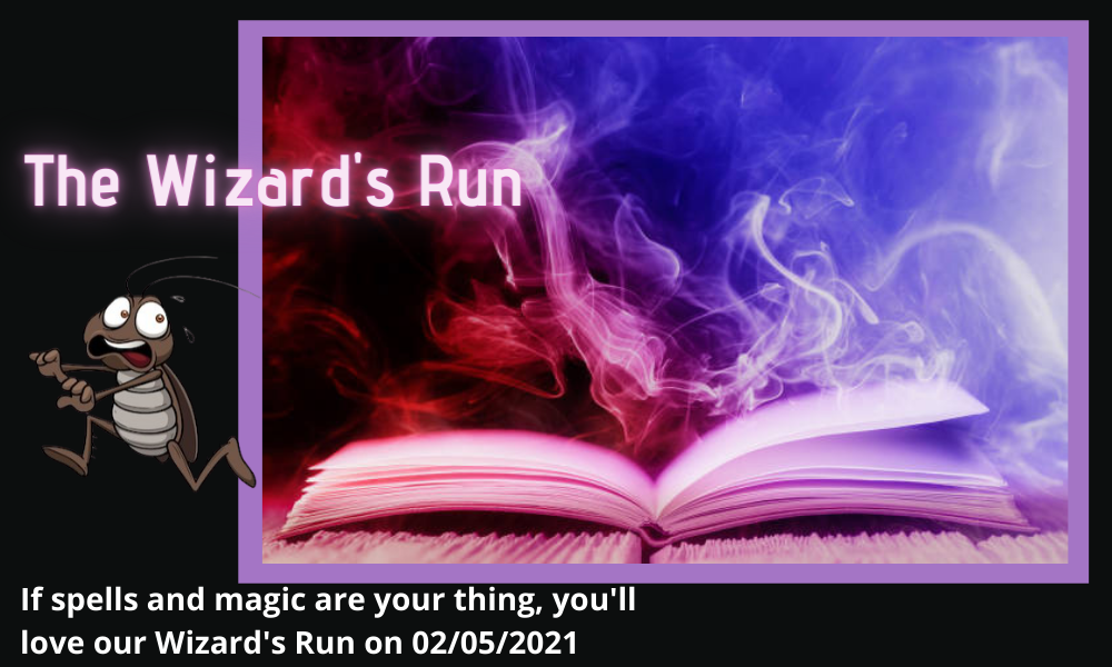 The Running Bug, THE RUNNING BUG - The Wizard's Run - online entry by EventEntry